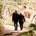 PENSIÓN DE VIUDEDAD VERSUS DIVORCIO